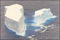 icebergs-ahoy.jpg